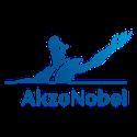 Logos new site - Akzo-1
