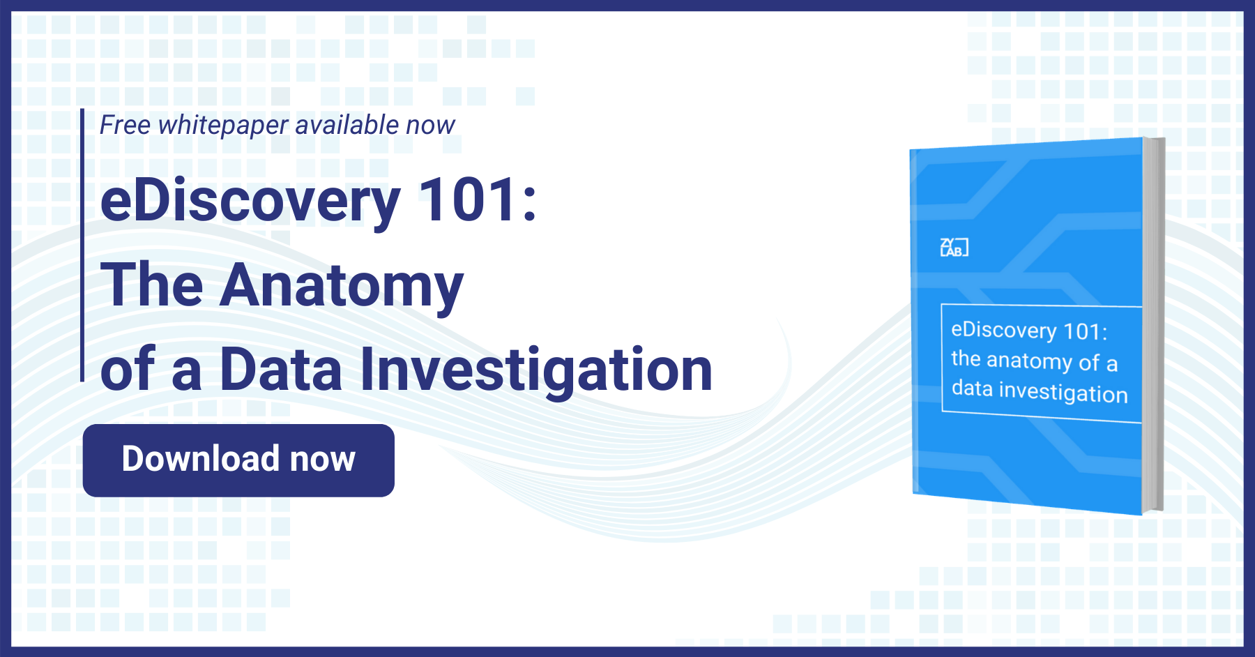 eDiscovery 101 - Lead Mag Whitepaper DL